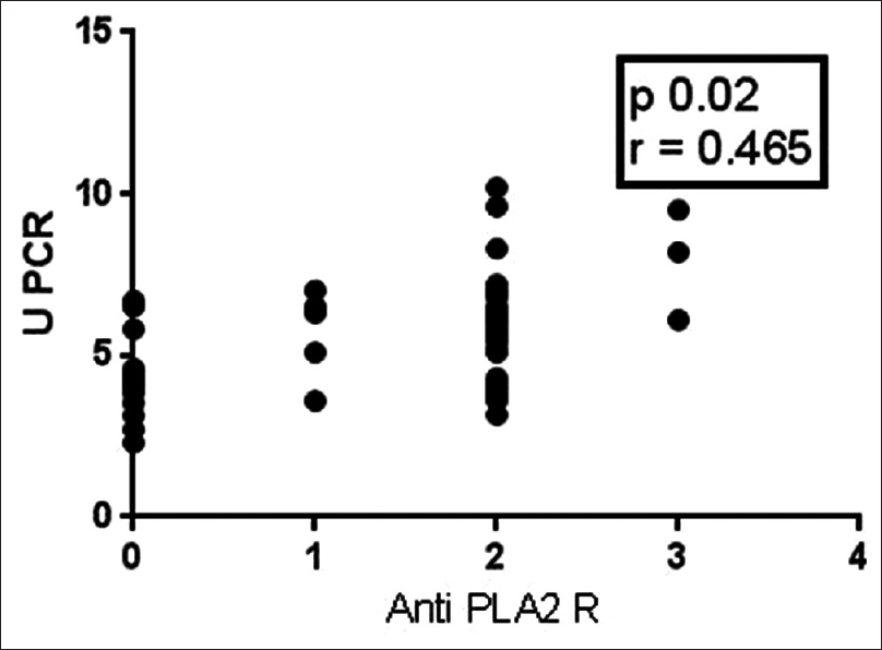Figure 2: Correlation between proteinuria and anti-phospholipase A<sub>2</sub>receptor intensity (Pearson correlation)